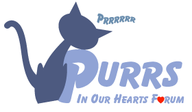 Purrs In Our Hearts   -  Cat Forum UK