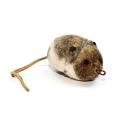 Purrs Woolly Vole Attachment - Fits PurrSuit , Frenzy & DaBird Rods