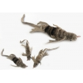 Purrs Lennie Lizard ClipOn prey - Fits PurrSuit, Frenzy & DaBird Rods