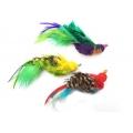 Purrs Parakeet Bird ClipOn - Fits PurrSuit, Frenzy & DaBird wands
