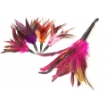 Purrs Rooster Fluffer Attachment - Fits PurrSuit, Frenzy & DaBird Rods